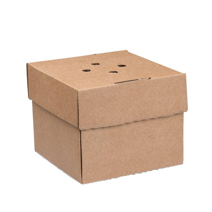 Premium Corrugated Burger Plate Box